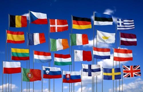 Vinasite cung cấp dịch vụ dịch thuật quảng ngãi đa ngôn ngữ đa lĩnh vực